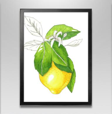 Сочный лимон - Постер в чёрной раме, фрукты