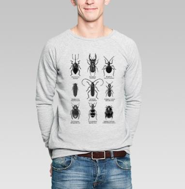 Жучары - Купить мужские свитшоты с насекомыми в Москве, цена мужских свитшотов с насекомыми  с прикольными принтами - магазин дизайнерской одежды MaryJane
