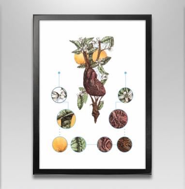 Цветущее сердце - Постер в чёрной раме, фрукты