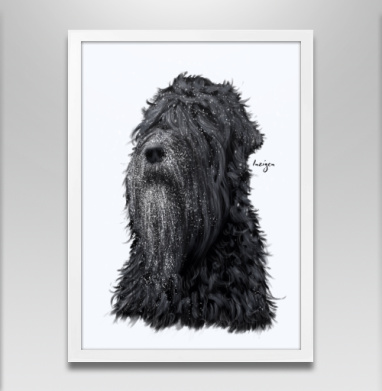 Русский черный терьер - Постер в белой раме, собаки