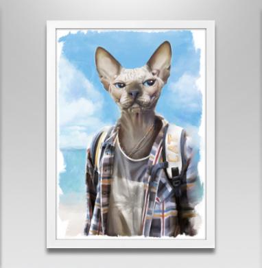 Сфинкс турист - Постеры, кошка, Популярные