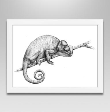Хамелеон в дотворке - Постеры, Популярные