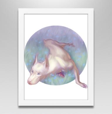Белый доберман - Купить плакаты