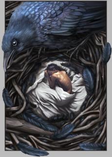Ворон-страж - ворона - Коллекции